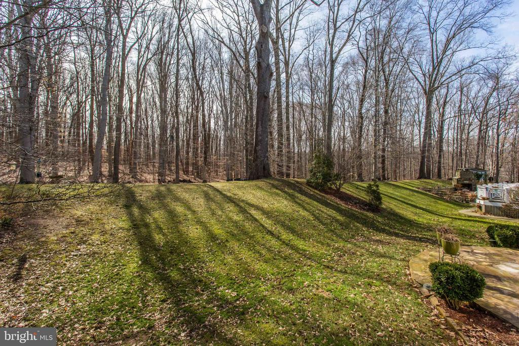 Private Backyard Backing to Woods - 47297 OX BOW CIR, STERLING