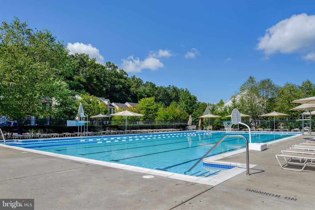 Rivercrest Pool - Home of the Riptide! - 47297 OX BOW CIR, STERLING