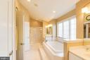 Master Bath - 42824 VESTALS GAP DR, BROADLANDS