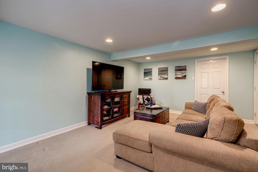 Lower Level - Great Recess Lighting, Carpet! - 42 KENNEDY ST, ALEXANDRIA