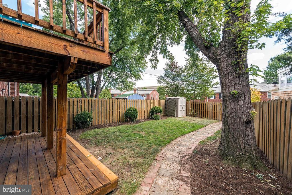 Lovely Back Yard! - 42 KENNEDY ST, ALEXANDRIA