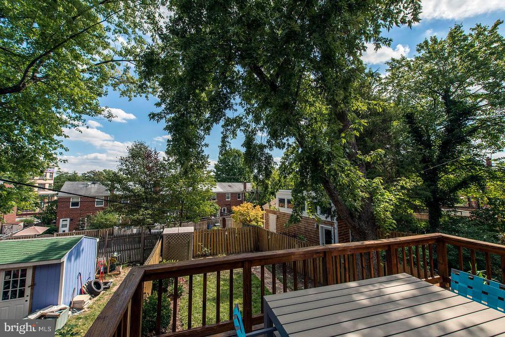 Deck - Overlooks Beautifully Back Yard! - 42 KENNEDY ST, ALEXANDRIA