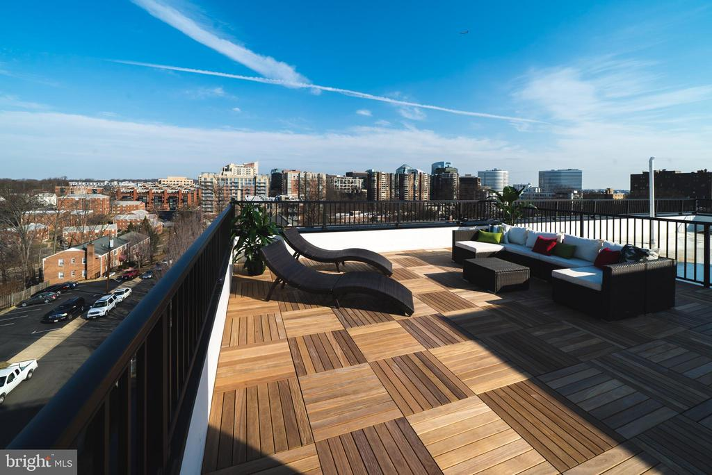 Private rooftop deck - 1245 PIERCE ST N #11, ARLINGTON