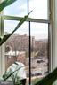 Above the treetops - 1245 PIERCE ST N #11, ARLINGTON