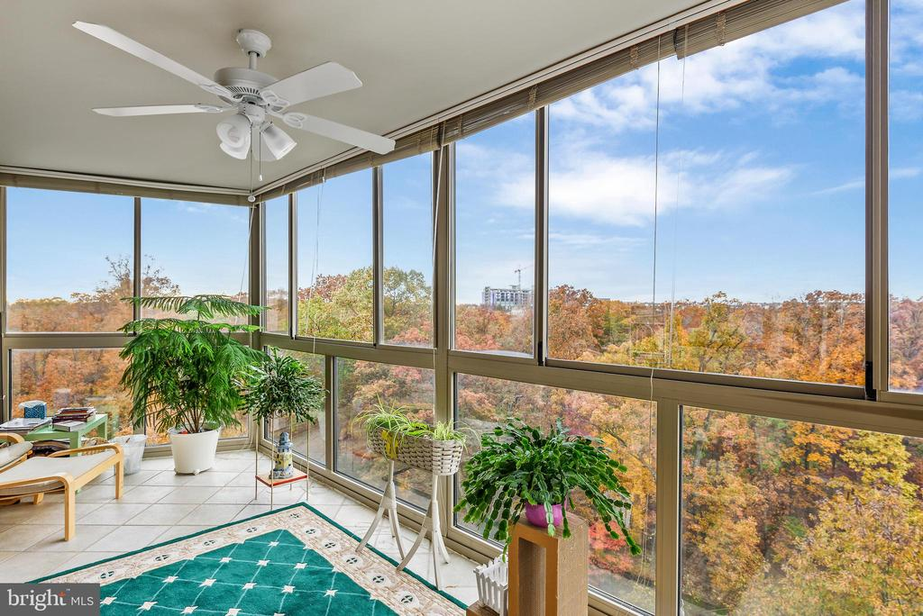 Left side of the sun room, nature views - 19385 CYPRESS RIDGE TER #801, LEESBURG
