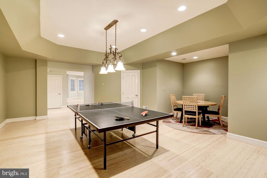 Billiards/Game/Card Room - 886 CHINQUAPIN RD, MCLEAN