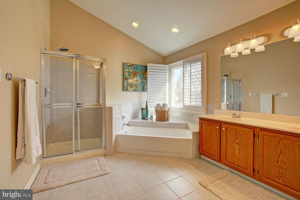 Light Filled Master Bath with Soaking Tub - 3055 JEANNIE ANNA CT, HERNDON