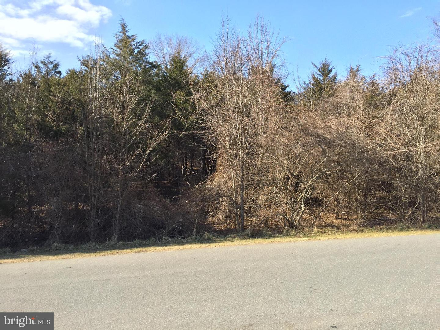 Land for Sale at Brookeville, Maryland 20833 United States