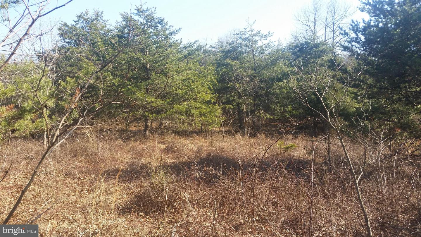 Land for Sale at 2 Enfield Heights Berkeley Springs, West Virginia 25411 United States