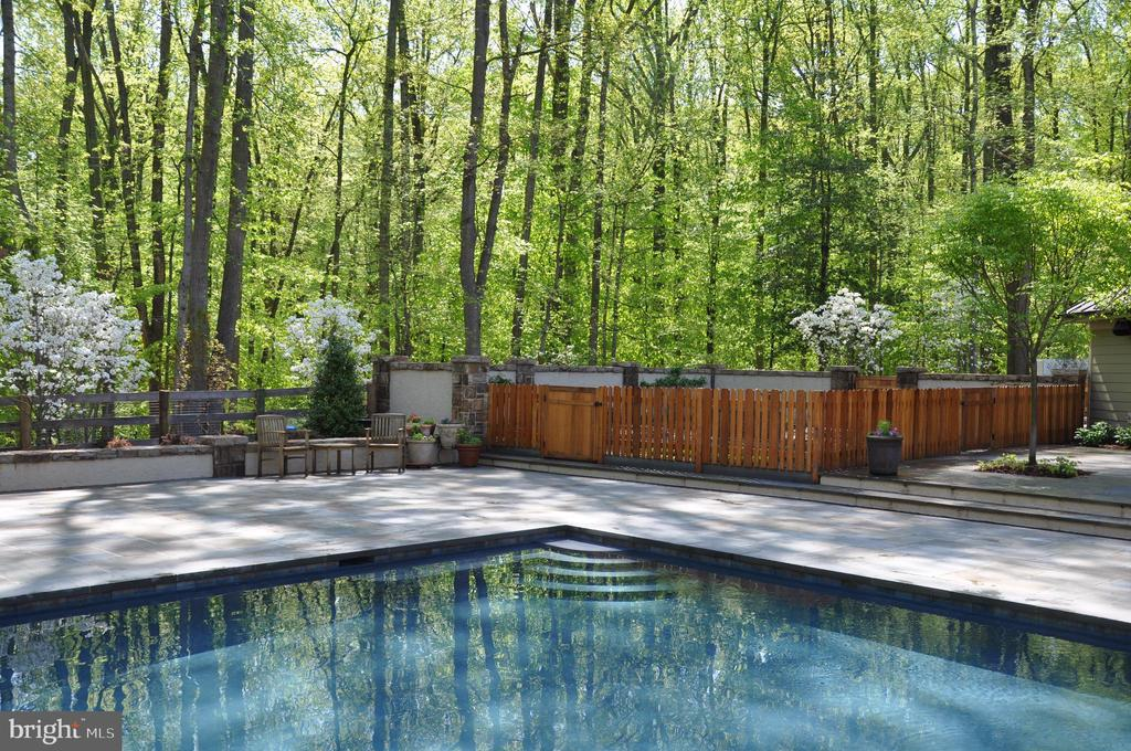 Gardens near pool deck - 203 CARRWOOD RD, GREAT FALLS