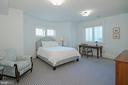 Lower level guest suite - 203 CARRWOOD RD, GREAT FALLS