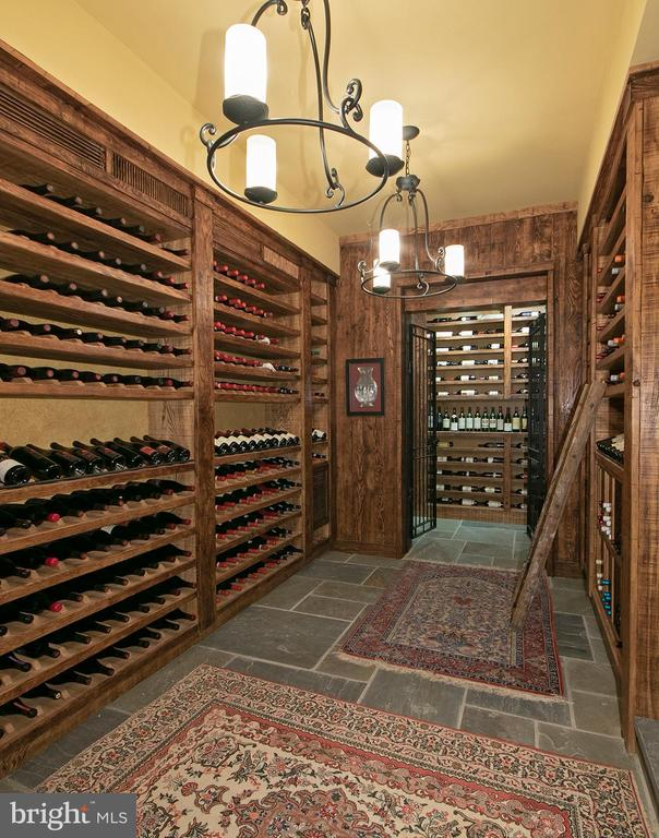 Professional Wine Cellar - 203 CARRWOOD RD, GREAT FALLS