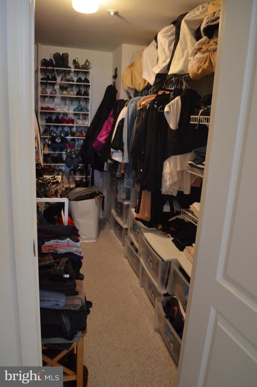 Walk-in closet - 2230 GEORGE C MARSHALL DR #1011, FALLS CHURCH