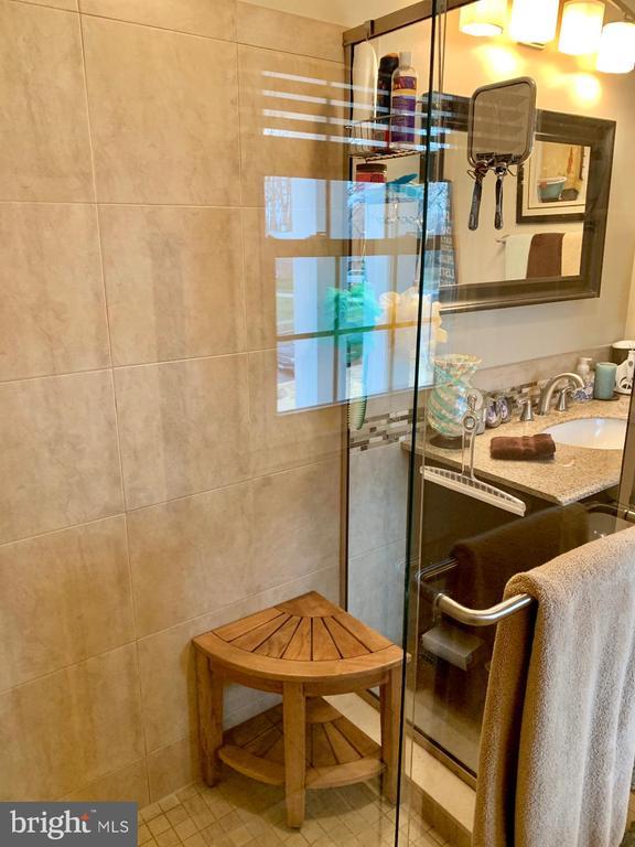 Master Bath shower - 9005 CHERRYTREE DR, ALEXANDRIA