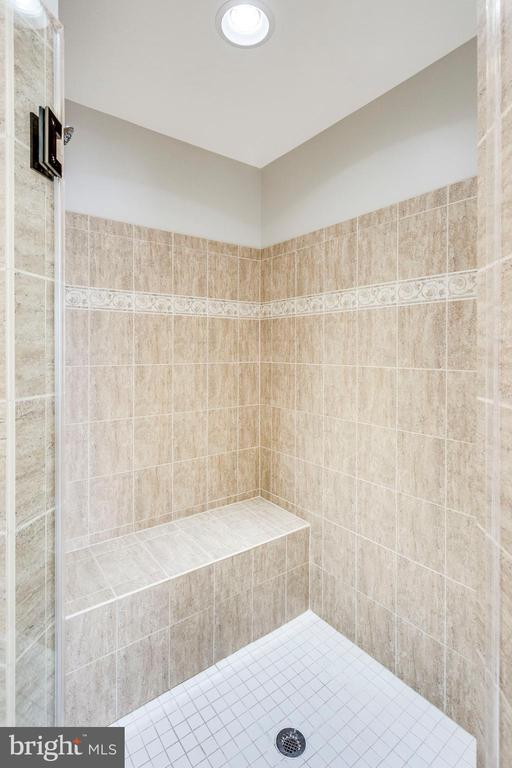 frame-less shower door in master bath. - 42744 RIDGEWAY DR, BROADLANDS