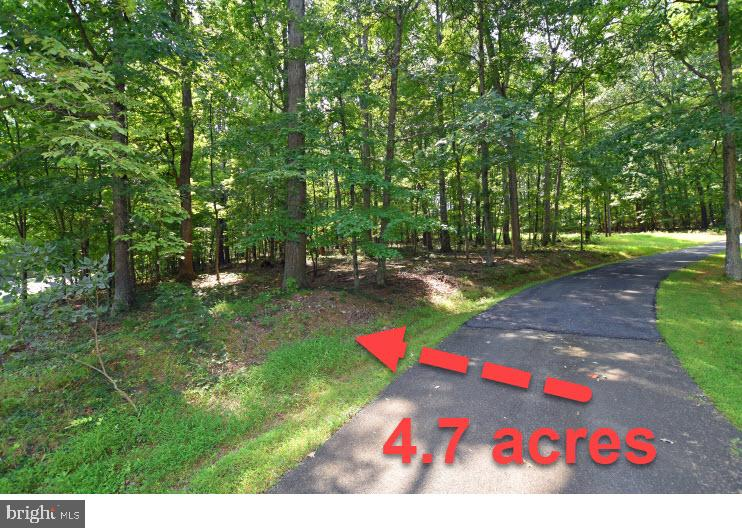 Land for Sale at 0 New Mountain Road Aldie, Virginia 20105 United States
