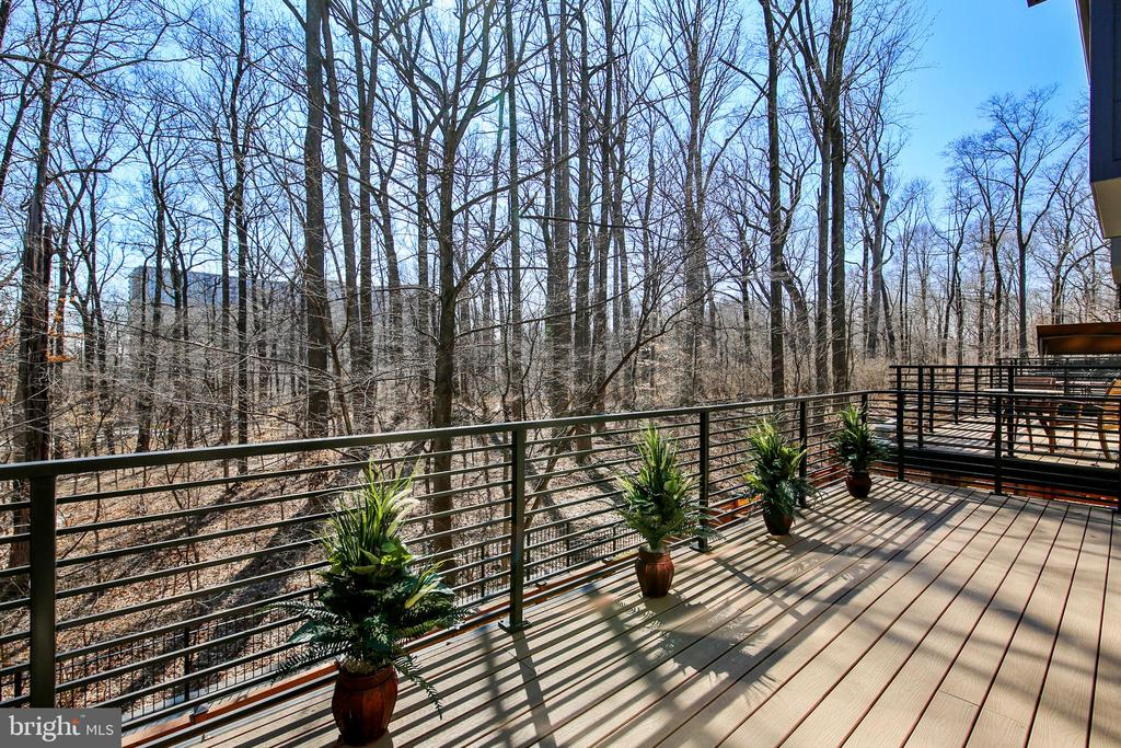 View from deck backing to woods - 5402 MERRIAM ST, BETHESDA