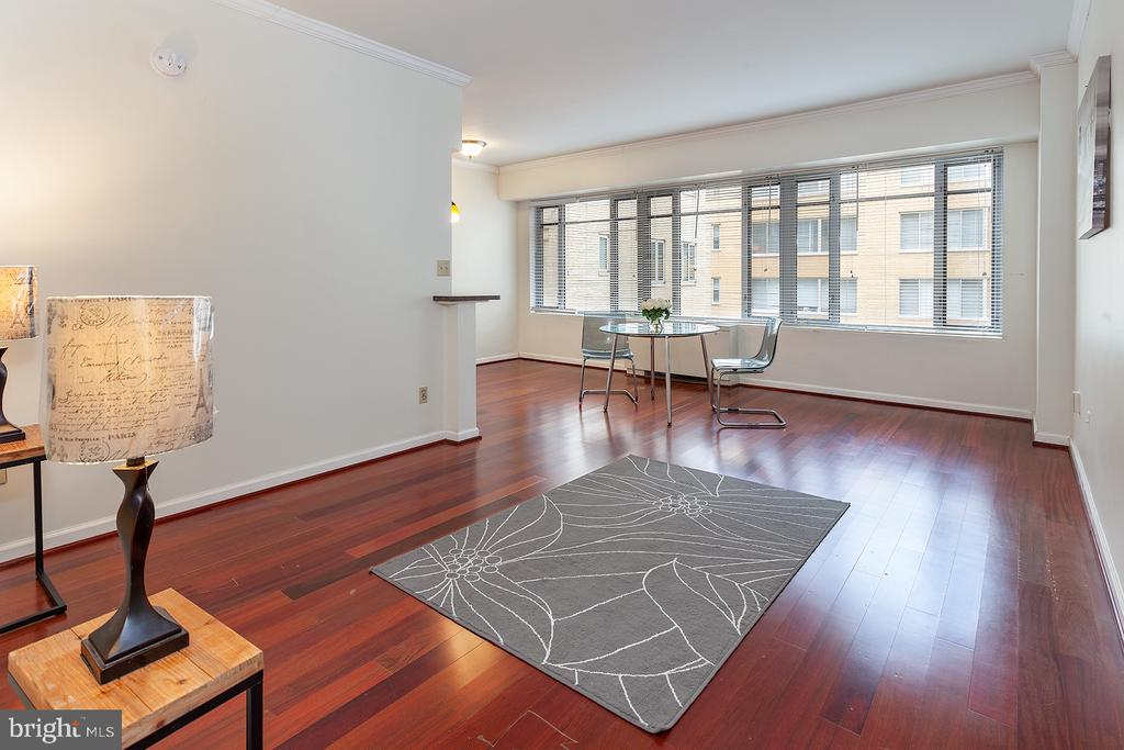 sun filled living space - 1711 MASSACHUSETTS AVE NW #523, WASHINGTON