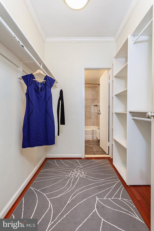 Spacious Closet with custom cabinets - 1711 MASSACHUSETTS AVE NW #523, WASHINGTON