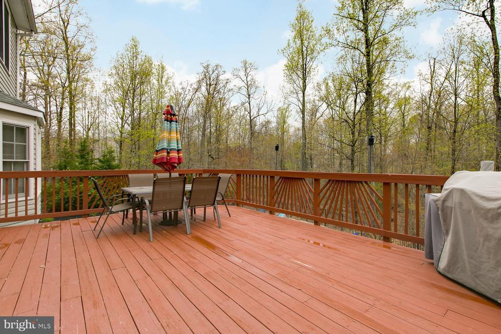 Expansive deck overlooking pool and play area - 1480 TRUSLOW RD, FREDERICKSBURG