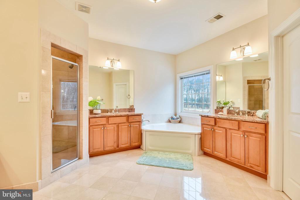 Master suite bathroom. - 7919 N PARK ST, DUNN LORING