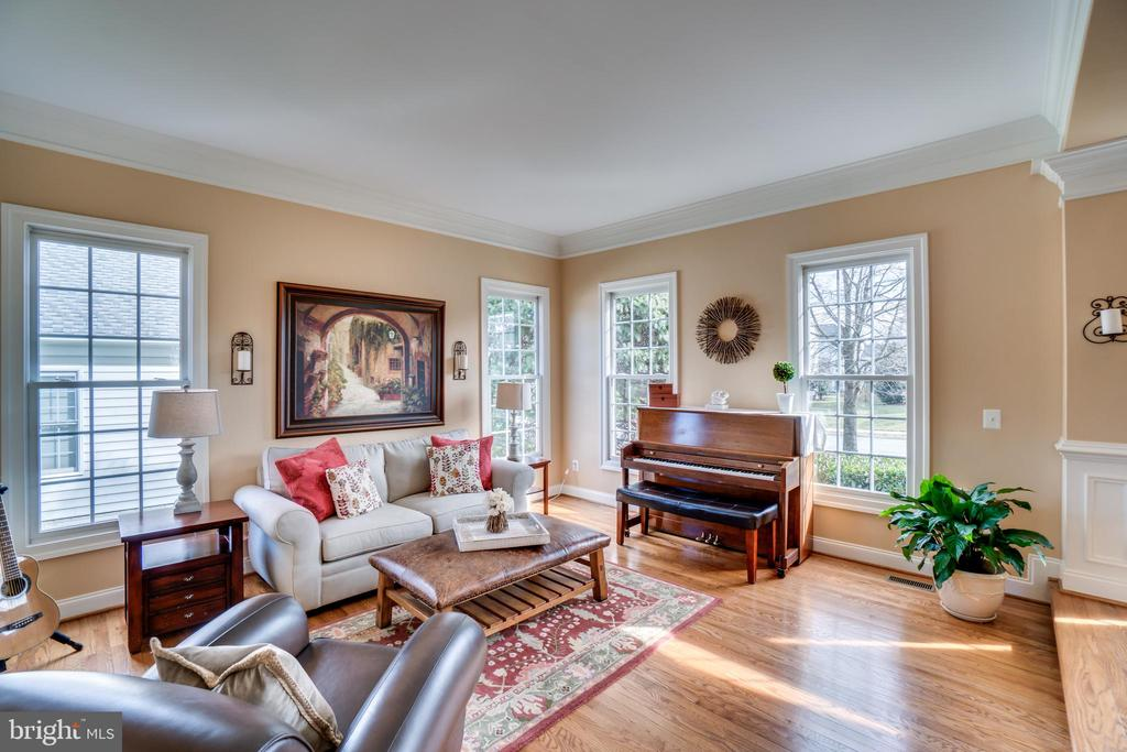 Bright living room - 18483 ORCHID DR, LEESBURG