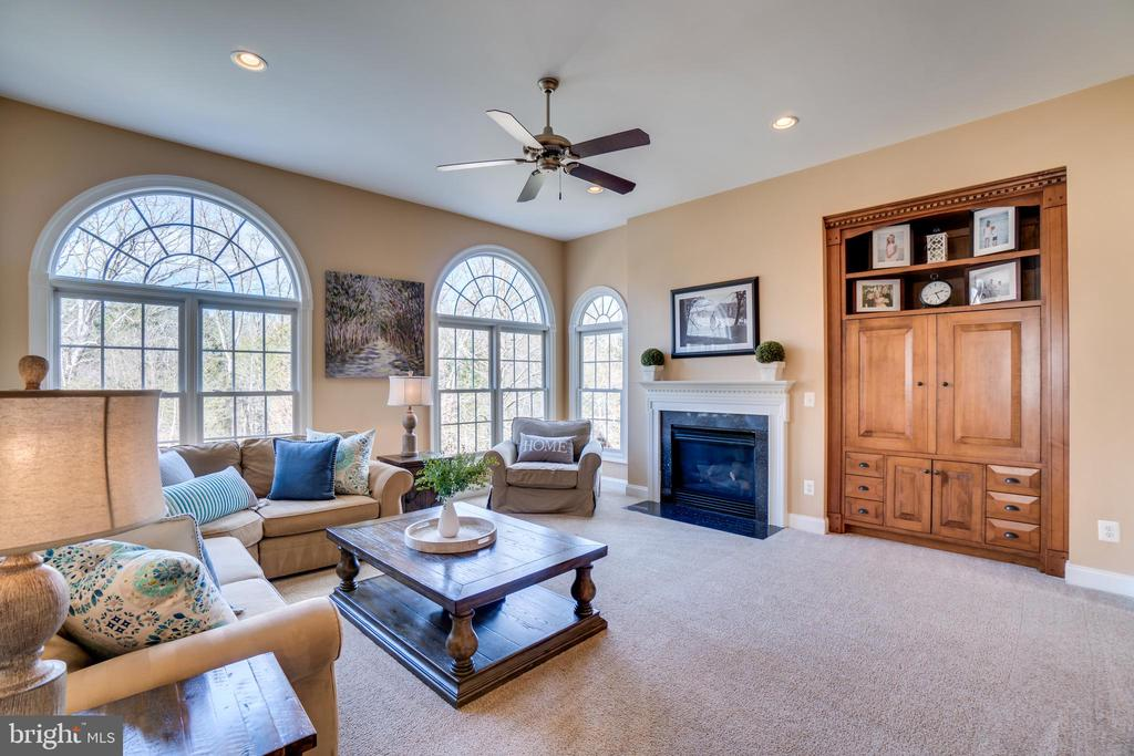Family room with fireplace - 18483 ORCHID DR, LEESBURG