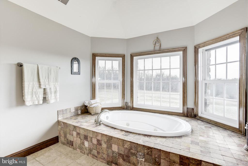 Master Bath - 17175 TWIN MAPLE LN, LEESBURG