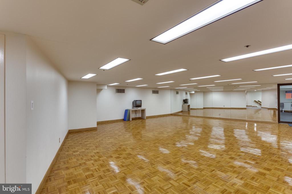 Community Room - 1300 CRYSTAL DR #PH3S, ARLINGTON