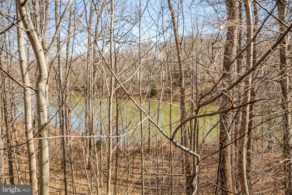 Lakeview - 8485 COLFAX DR, KING GEORGE