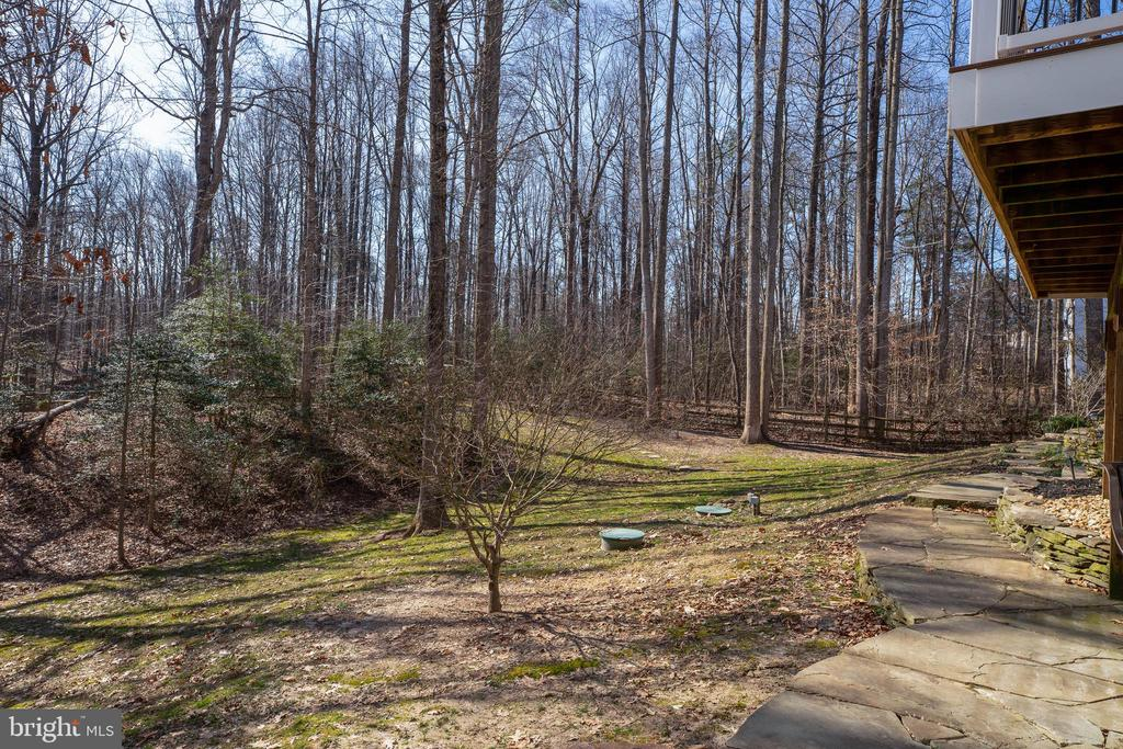 Pathways and Rear Private Yard - 12157 CANTERBURY CT, KING GEORGE