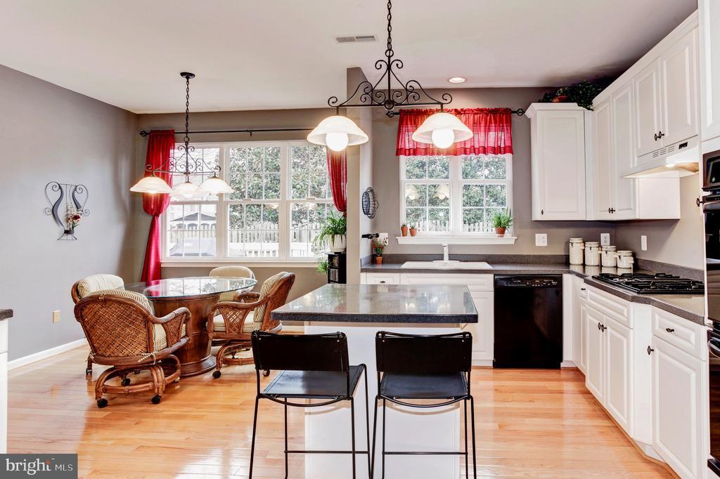 Large kitchen - 43304 DRESSMAKER LN, CHANTILLY