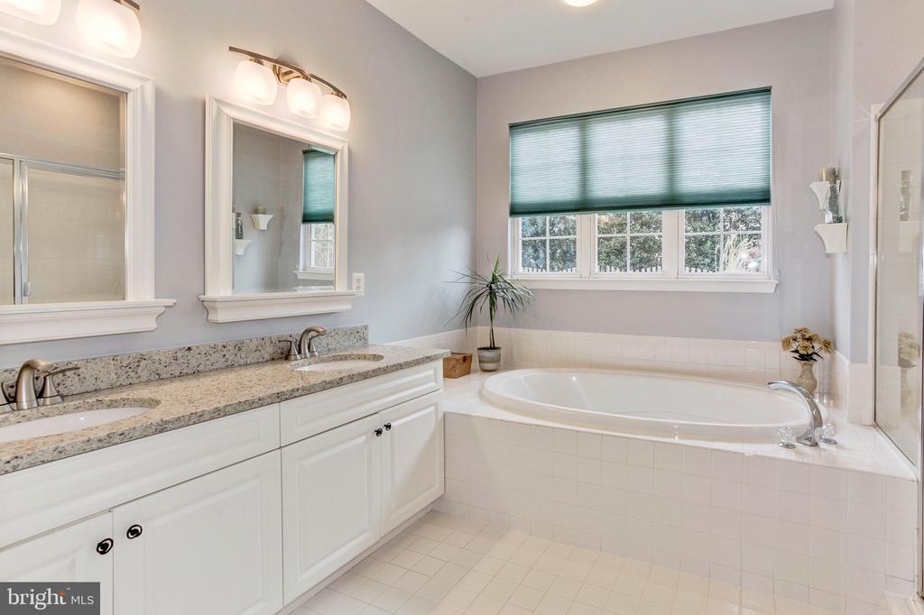 Luxurious master bathroom - 43304 DRESSMAKER LN, CHANTILLY