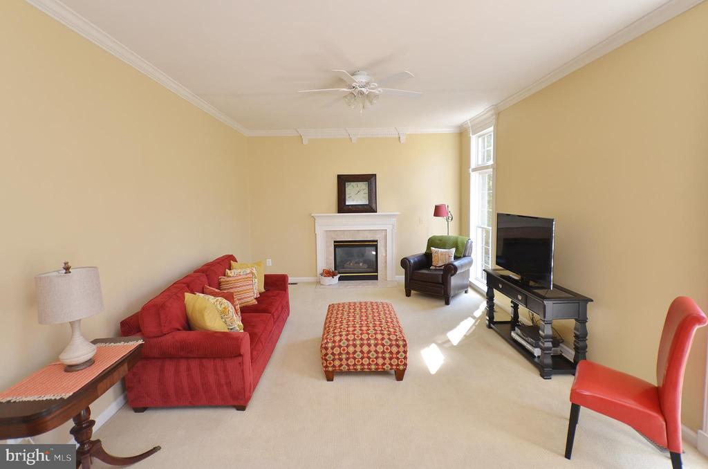 Family Room with gas fireplace - 18707 DRUMMOND PL, LEESBURG
