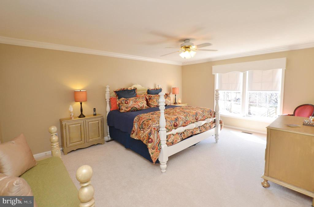 Large master bedroom - 18707 DRUMMOND PL, LEESBURG