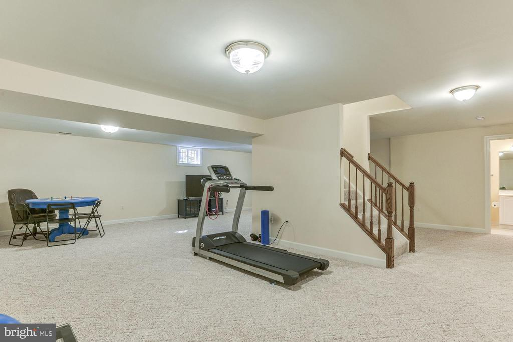 Lower level Game Room - 9709 BROOKSTONE LN, VIENNA