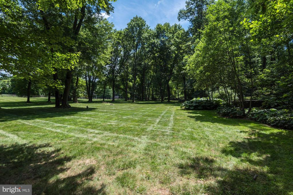 Flat Backyard - 696 BUCKS LN, GREAT FALLS