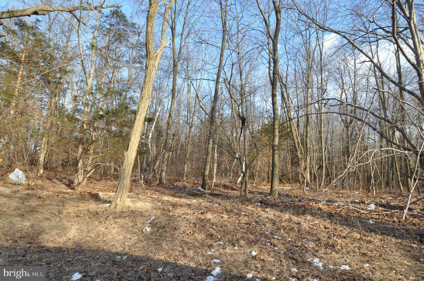 Land for Sale at Wrightstown, New Jersey 08562 United States