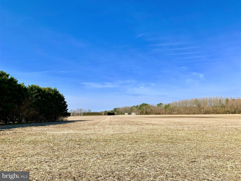 Additional photo for property listing at  Georgetown, 特拉華州 19947 美國