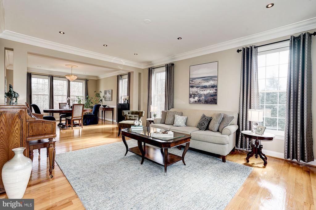 Sophistocated light & bring living room - 1309 SHAKER WOODS RD, HERNDON