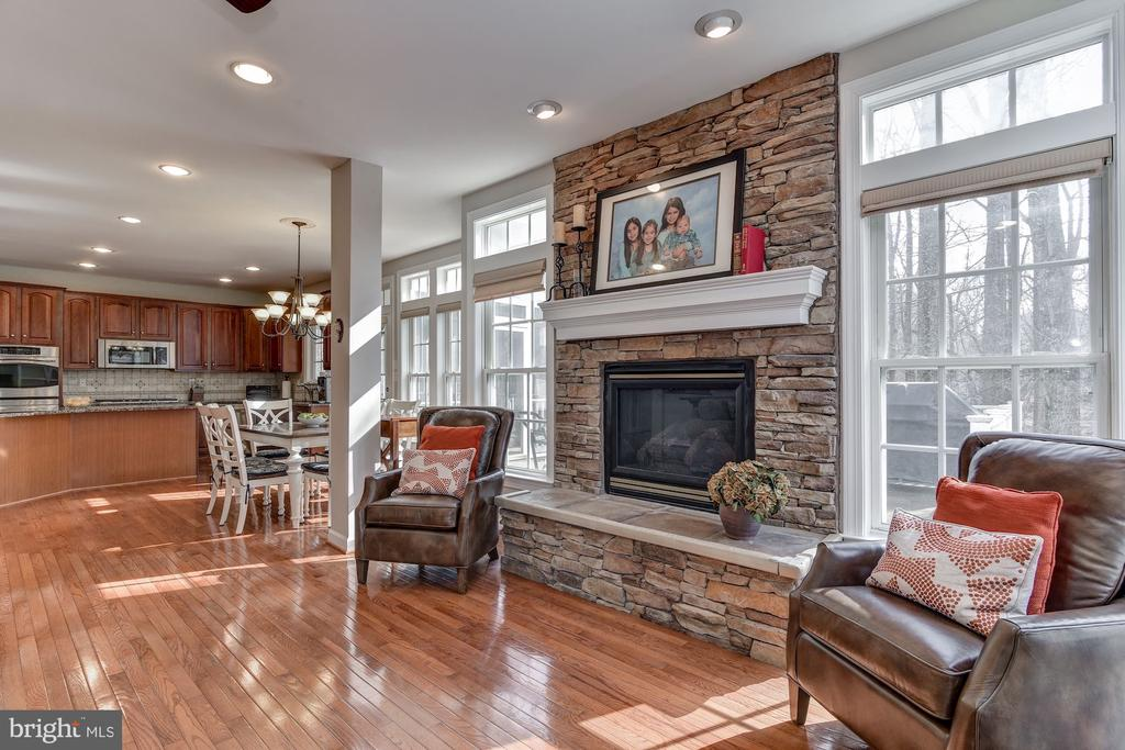 Bright, airy family room - 718 TURTLE POND LN, GAITHERSBURG