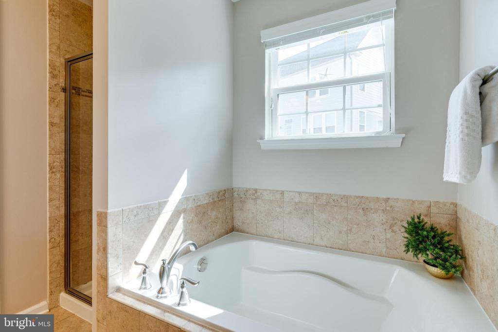 Spa experience in this bathroom - 2439 GLOUSTER POINTE DR, DUMFRIES