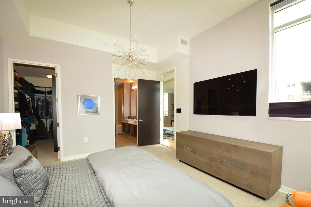 Master bedroom with en suite and walk-in closet - 12025 NEW DOMINION PKWY #G101, RESTON