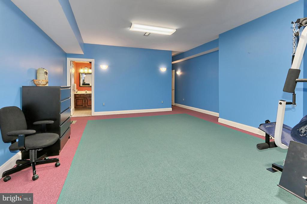 Exercise Room - 36585 SAWMILL LN, PURCELLVILLE