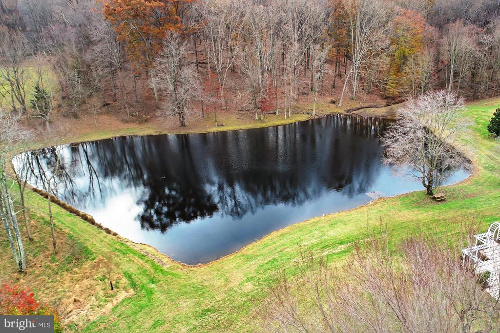 Fully Stocked Pond - 36585 SAWMILL LN, PURCELLVILLE