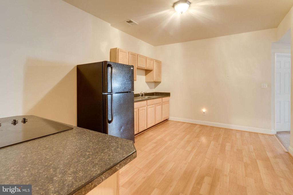 Lower level kitchen - 6136 FERRIER CT, GAINESVILLE