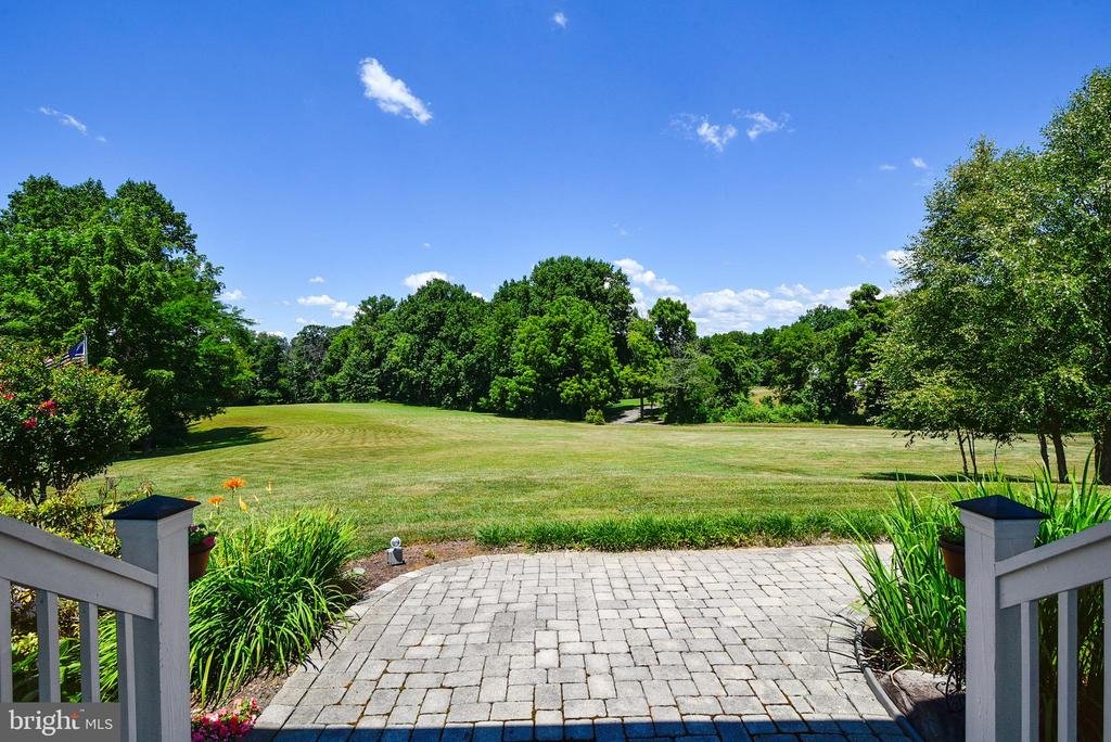 Views from the front porch - 38961 SHIRE MEADOW LN, HAMILTON