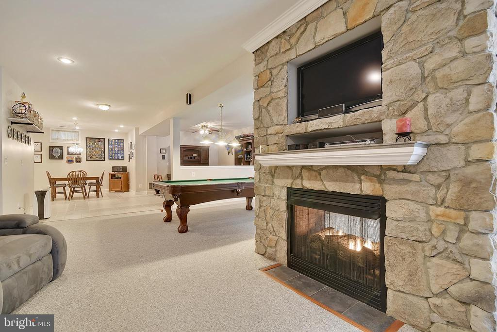 Two sided gas fireplace - 38961 SHIRE MEADOW LN, HAMILTON