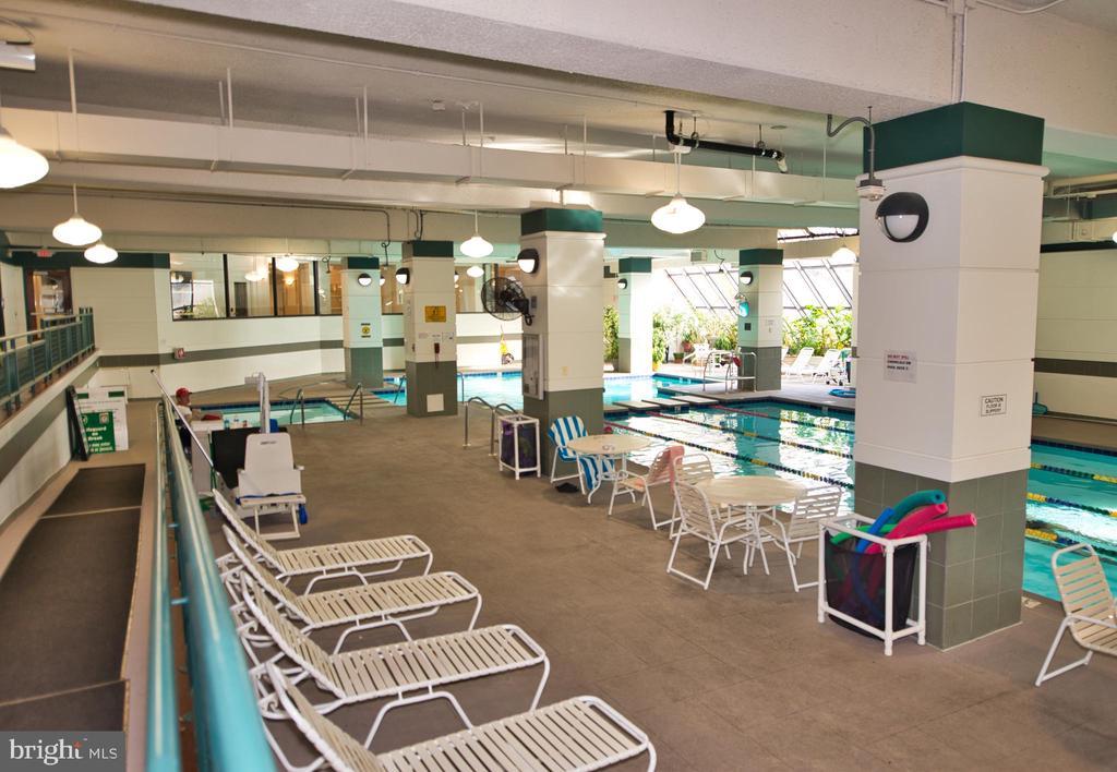 Amenities -- Indoor Pool with Lap Lanes - 203 YOAKUM PKWY #317, ALEXANDRIA