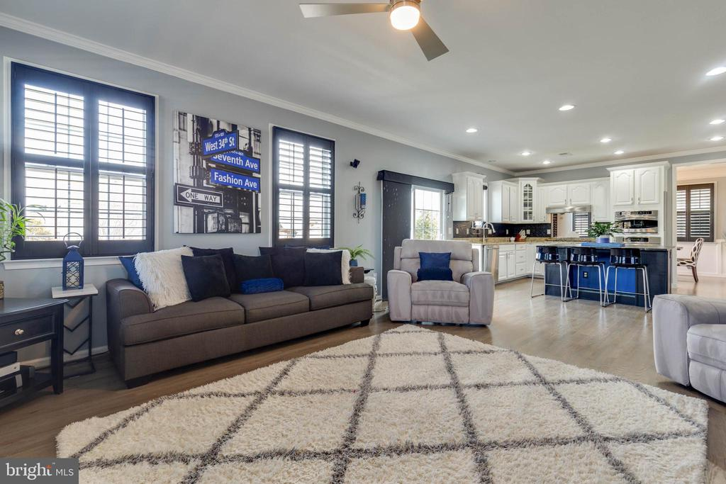 Family Room with Moldings and Plantation Shutters - 41957 DONNINGTON PL, ASHBURN